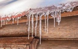 Ghiaccioli ghiacciati Fotografia Stock