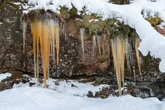 Ghiaccioli marroni che pendono da una scogliera con neve in priorità alta e nel fondo Immagini Stock Libere da Diritti