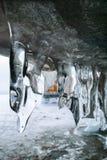Ghiaccioli nella caverna Immagine Stock Libera da Diritti