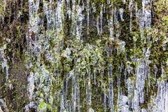Ghiaccioli sulla scogliera della montagna Fotografie Stock Libere da Diritti