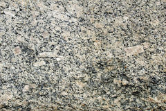 Ghiandone granite rock. Magmatic rock commercial ghiandone gneiss royalty free stock image