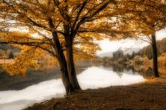 Ghirla sjö i mjukt landskap för höst arkivbilder