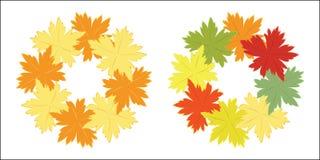 Ghirlanda di autunno delle foglie luminose di caduta Fotografie Stock Libere da Diritti