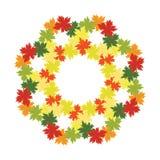 Ghirlanda di autunno delle foglie luminose di caduta Fotografia Stock