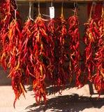 Ghirlande dei peperoni freddi rossi asciutti fotografia stock