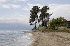 Ghisonaccia,在海滩,东可西嘉岛,法国 图库摄影
