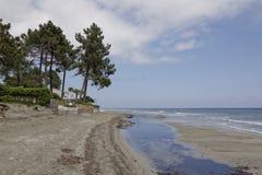 Ghisonaccia,在海滩,东可西嘉岛,法国 免版税库存照片
