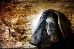 Ghost black widow stock photo