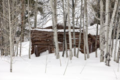 Ghost Cabin In Snow Royalty Free Stock Photo