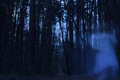 Ghost dancing a haunted dance in the forest Stock Photo