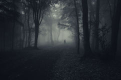 Ghost in dark forest with fog on Halloween. Ghost in dark mysterious forest with fog on Halloween royalty free stock photo