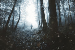 Ghost in dark forest with fog Stock Image