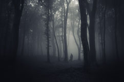 Ghost in a dark scary mysterious forest on Halloween. Night stock photos