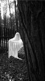 Ghost. Fake ghost photo - woman silhouette in white dress walking in the creepy forest royalty free stock images