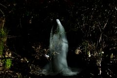 The Ghost. Figure of a lonely ghost in the forest Royalty Free Stock Photo