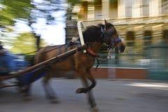 Ghost fonctionnant aiment le cheval à la rue d'île de sacoche Photos libres de droits