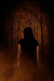 Ghost in the forest Royalty Free Stock Photography