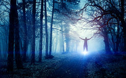 Ghost in forest. Blue light in a mysterious forest with fog Royalty Free Stock Image