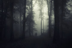 Ghost on Halloween in mysterious dark forest with fog Royalty Free Stock Photos