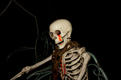 Ghost on halloween, Skeleton with neck chain Stock Image