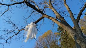 A Ghost Hanging from a Tree Stock Images