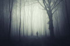 Ghost in haunted forest Stock Photography
