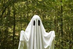 Ghost na floresta imagens de stock