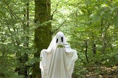 Ghost na floresta imagens de stock royalty free