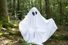 Ghost na floresta foto de stock royalty free