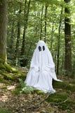 Ghost na floresta fotografia de stock