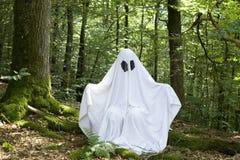 Ghost na floresta Fotos de Stock