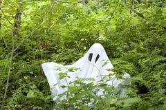 Ghost na floresta fotos de stock royalty free