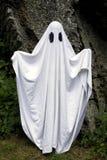 Ghost que está na frente de uma rocha Fotografia de Stock