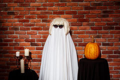 Ghost in sunglasses and wig posing over brick background. Halloween party. Stock Image
