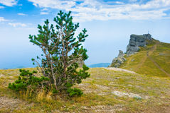 Ghost Valley. Landmark - Ghost Valley, Demerdji, Crimea, Ukraine Stock Photos