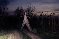 Ghost voa ao longo da estrada Foto de Stock Royalty Free