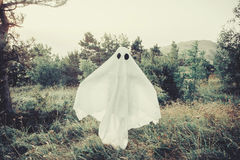Ghost walking in the forest Stock Photography
