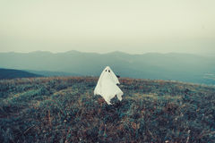 Ghost walking on meadow Stock Photography