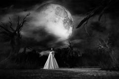 Ghost woman in white dress in Creepy forest. 3d illustration Stock Photography