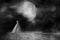 Ghost woman in white dress in Creepy forest. 3d illustration Stock Images