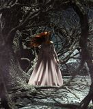 Ghost woman in the woods. 3d illustration for book illustration or book cover royalty free illustration