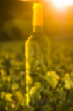 Ghosted Weinflasche Lizenzfreie Stockbilder