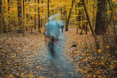 Ghostly figures in autumnal square, autumn forest landscape, trees with yellow leaves and alleys.  royalty free stock photography