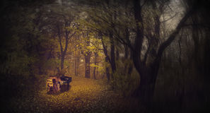 Ghostly girl playing the piano in a foggy forest Stock Photo
