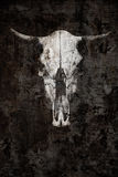 The ghostly skull of a bull on a black background. Creative photography Stock Photo