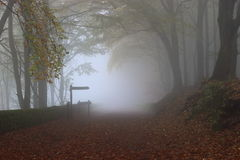 The Ghostly Trail. Ghostly autumn scene looking down the High Peak railway track Stock Photography