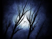 Ghostly Trees with Birds on a Snowy Night - Digital Illustration. A hand-drawn illustration featuring ghostly, silhouetted trees and birds in flight against a Royalty Free Stock Photography