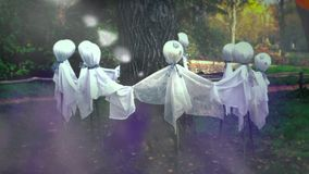 Ghosts Around a Tree stock video footage