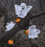 Ghosts and pumpkins in the forest Royalty Free Stock Photo