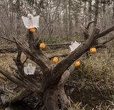 Ghosts and pumpkins in the forest 3 Royalty Free Stock Photography